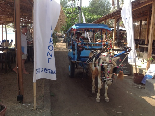 Pony Cart Taxi Gili Air Island - Indonesia